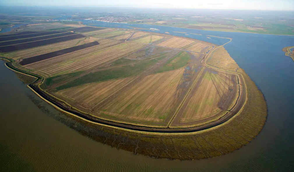 The Wallasea bird sanctuary, built out of construction waste. Photo: Crossrail
